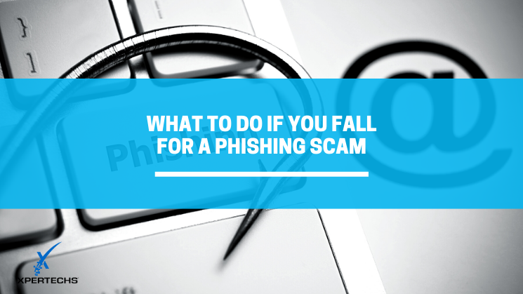 What to Do if You Fall For a Phishing Scam
